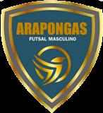 Arapongas Futsal